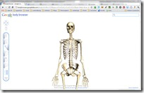 Body Browser - Google Labs - Google Chrome 16.12.2010 102707