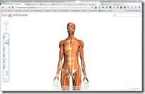 Body Browser - Google Labs - Google Chrome 16.12.2010 102748